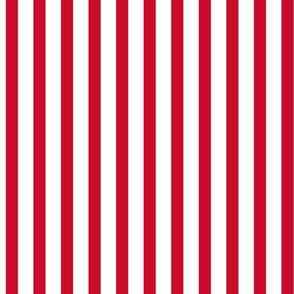 Popcorn stripe (Christmas red, large)