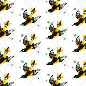 Black bird flight
