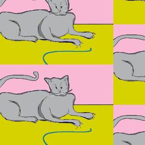 Playful Cat?- pink