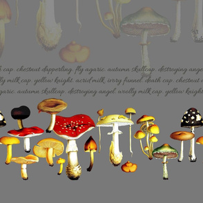mushroom_border_grey_layers_ver2