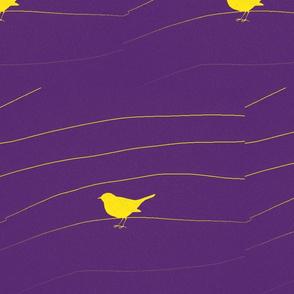 Yellow Birds/purple ground