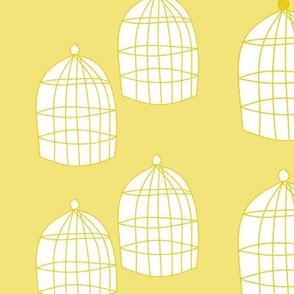 Yellow birdcages