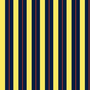 Stripes - Vertical - 1 inch (2.54cm) Yellow (f9ea62), Dark Blue (041e41) and Dark Red (9c2e22)
