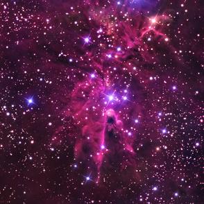 Fox Fur Nebula - (Large, up to 3 YDS)
