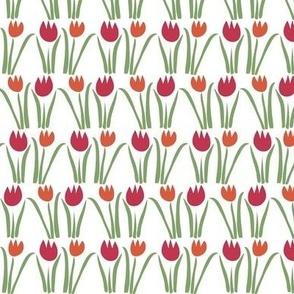 Floriade Tulips_celebrate