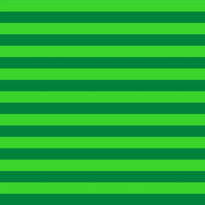 Stripes - Horizontal - 1 inch (2.54cm) - Dark Green (#00813C) & Light Green (#3AD42D)