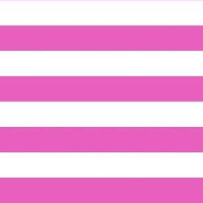 Stripes - Horizontal - 1 inch (2.54cm) - Light Pink (#E95FBE) & White (#FFFFFF)