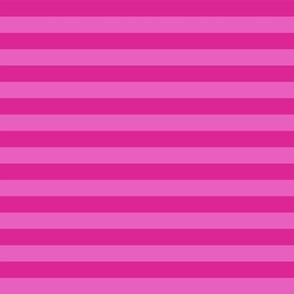 Stripes - Horizontal - 1 inch (2.54cm) - Light Pink (#E95FBE) & Medium Pink (#DD2695)
