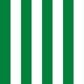 Stripes - Vertical - 1 inch (2.54cm) - Green (#00813C) & White (#FFFFFF)