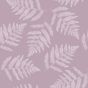 white ferns on mauve