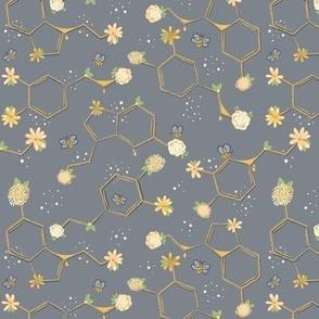 Gecko Dots © Jennifer Garrett