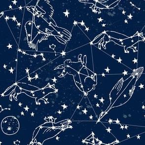 constellations // night time kids sky animals fox bear birds stars astronomy navy blue nursery