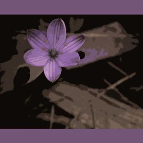 Blooming Shadows Purple