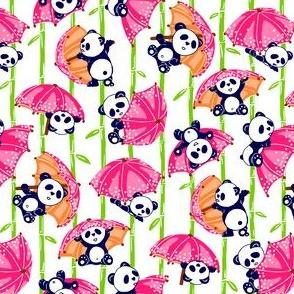 pandas 6inches