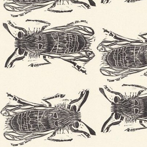 Bee Kind Insect Collection