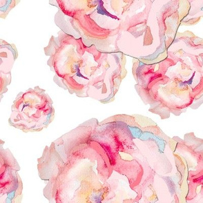 Watercolor painted roses