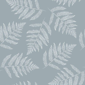 white ferns on slate grey