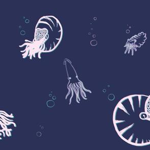 Dreamy Cephalopods
