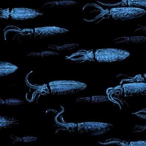 Firefly Squid - Hotaruika