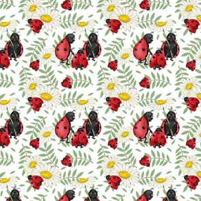 Ladybug  Family Stroll -White