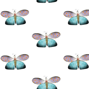 A 2 February 2011 - Butterfly Blue Purple Dots Fabric