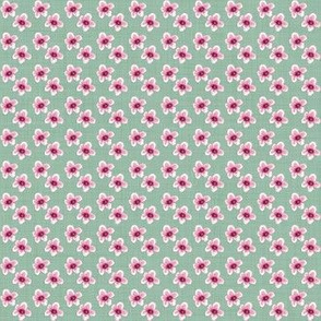 Sweet Annie Cherry Blossoms