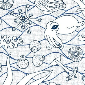 Cephalopods: White & Blue