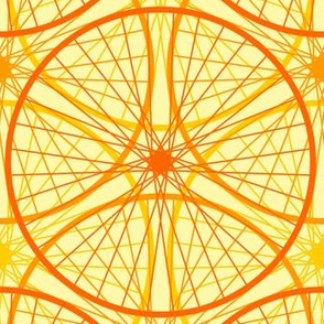 04658952 : a new golden age of cycling