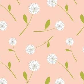 dandelion scatter blush