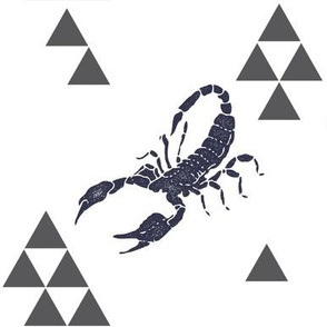Geometric Scorpion in Navy
