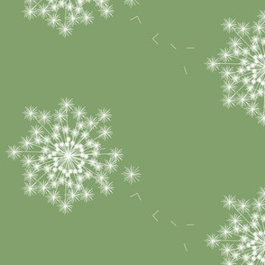 Dandelion Wish_summer_garden