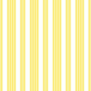 French Ticking ~ Citron Presse