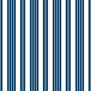 French Ticking ~ Lonely Angel Blue and White