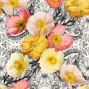 Graphic Poppy Collage