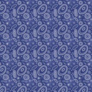 micro_org_reunion_01_blue