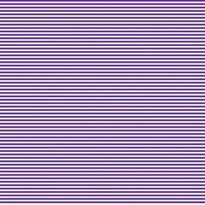 Tiny Stripes Purple