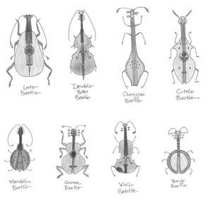 greyscale stringed beetles