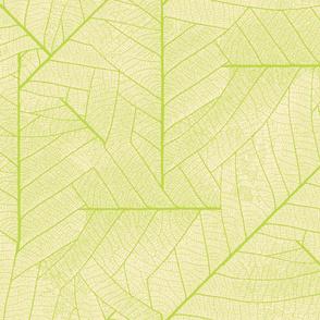 Leaf-light