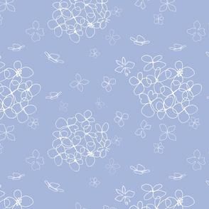Hydrangea blue and white