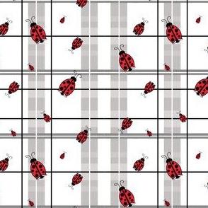 Ladybug Plaid