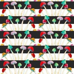Wild Mushrooms on Charcoal Stripe