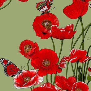 RED_Poppies and Butterflies on Pale Green