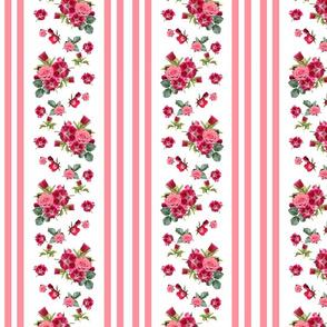 Vintage Floral Stripes Coral Rose