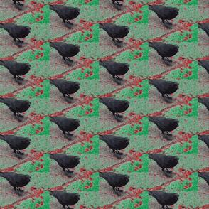 Crow 4 Xmas
