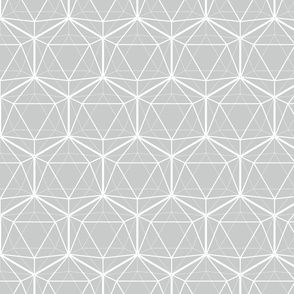 Icosahedron White on Soft Gray