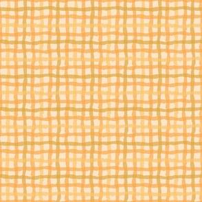 Orange_Bright_Beach_Gingham-01