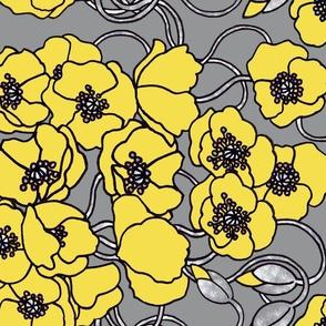 Yellow poppies on grey