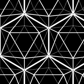 Icosahedron White on Black