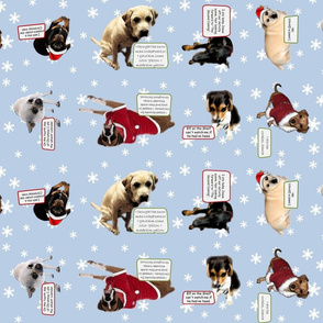 Christmas Dog Shaming 03