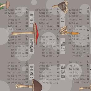 2016 Calendar Mushrooms